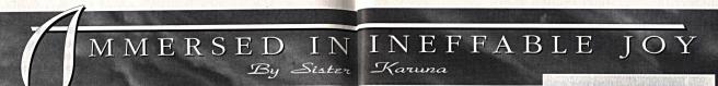 Banner Karuna Immersed in Ineffable Joy 1_Fotor
