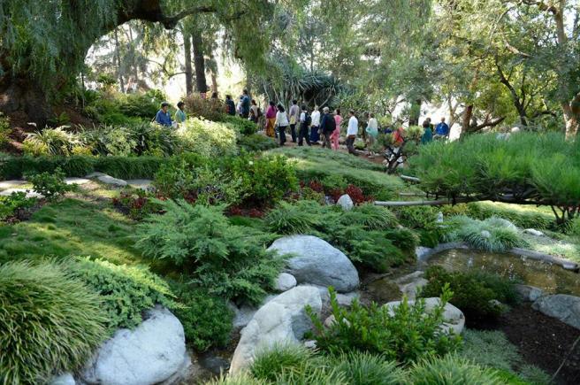 encinitas-garden-devotees-walking